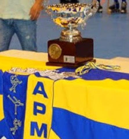 IX Torneio Jorge Coutinho - Riba d'Ave, Famalicense ou Valença HC decidem segundo finalista